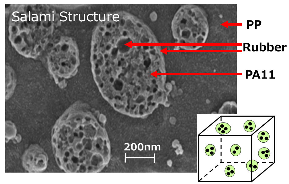 [Fig. 1] Nanostructure of High Impact Polymer Resin
