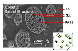 [図1] 高耐衝撃プラスチックのナノ構造